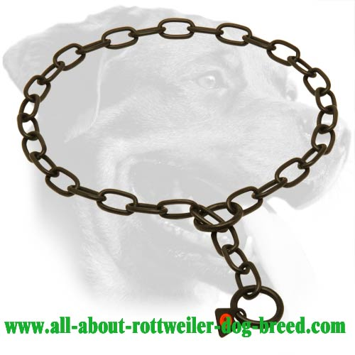 Stainless Steel Rottweiler Collar for Behavior Problems Correction - 3 mm Link Diameter