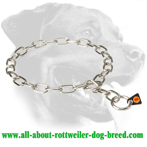 Rottweiler Choke Collar for Pulling Problems Correction - 1/9 inch (3 mm) Link Diameter - Click Image to Close