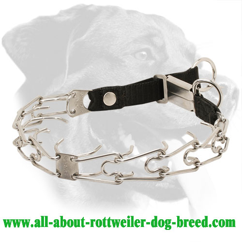 Stainless Steel Rottweiler Pinch Collar, 1/8 inch (3.2 mm) Prong Diameter
