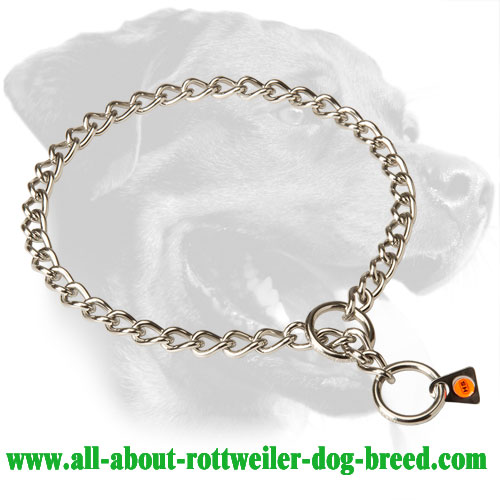 High Quality Stainless Steel Rottweiler Choke Collar, 1/9 inch (3 mm) Link Diameter