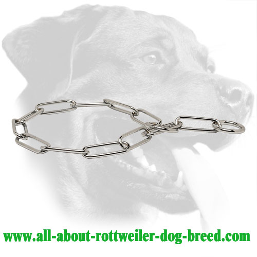 Chrome Plated Rottweiler Choke Collar, 1/6 inch (4.0 mm) Link Diameter