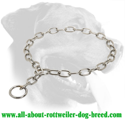 Chrome Plated Steel Rottweiler Choke Collar, 1/8 inch (3,5 mm) Link Diameter
