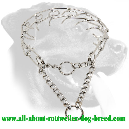 Rottweiler Pinch Collar for Safe Behavior Correction, 1/8 inch (3.2 mm) Prong Diameter