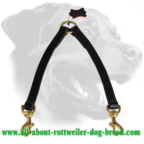 Leather Rottweiler Coupler with Brass Snap Hooks