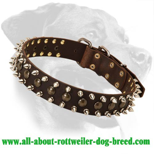 Royal Leather Collar with studs and spikes for Rottweiler