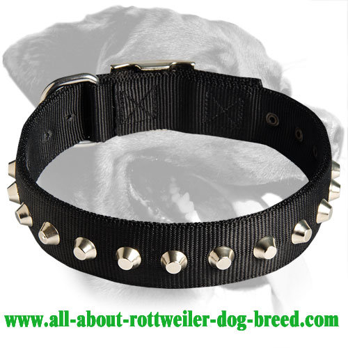 Wide Nylon Collar with pyramids for Rottweiler