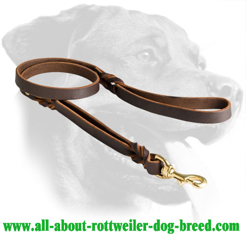 Braided Leather Rottweiler Leash with Double Handle