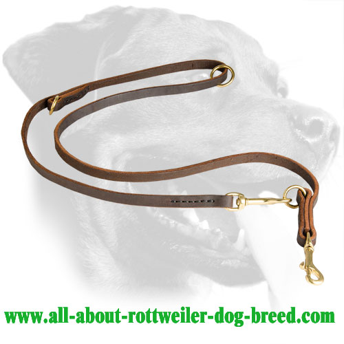 Rottweiler Leather Leash for training, walking, tracking