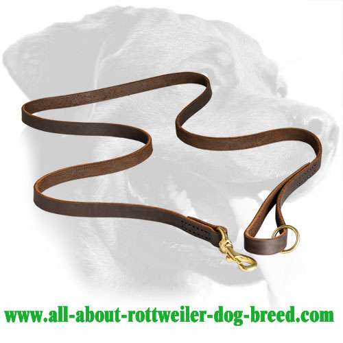 Astonishing Rottweiler Stitched Leather Leash