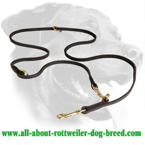 Extra Soft English Leather Rottweiler Leash for Everyday Walking and Training