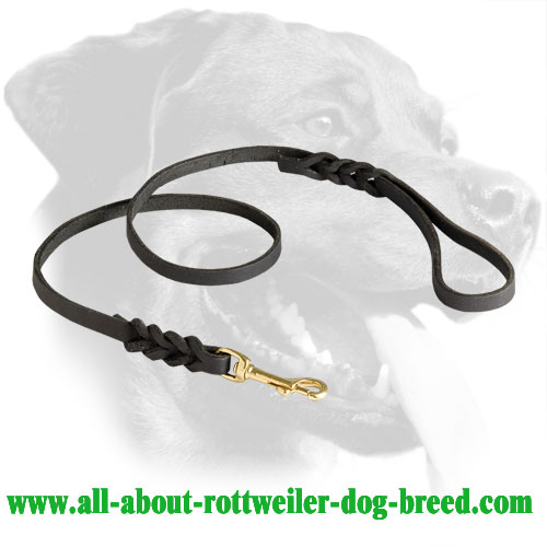 Astonishing Braided Leather Leash for Rottweiler
