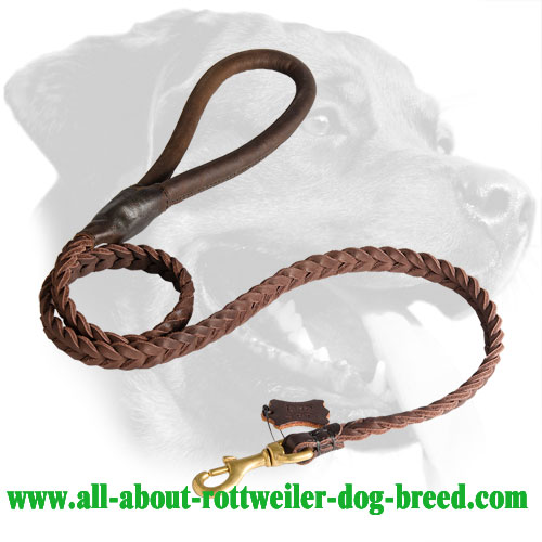First Class Braided Leather Rottweiler Leash with Round Handle