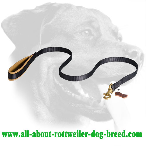 Nylon Rottweiler Leash with Padded Handle