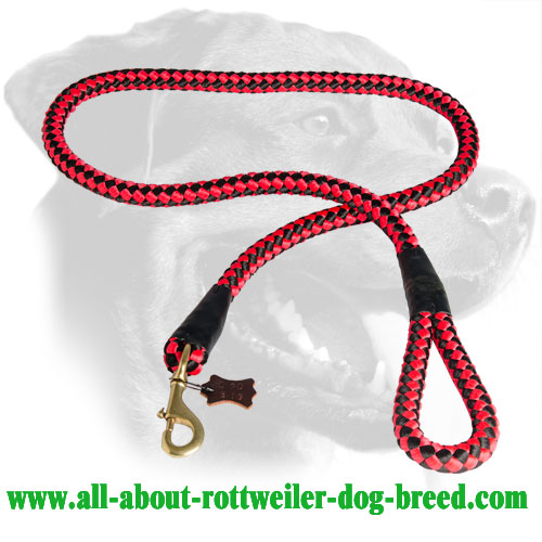Nylon Cord Rottweiler Leash with Brass Hardware