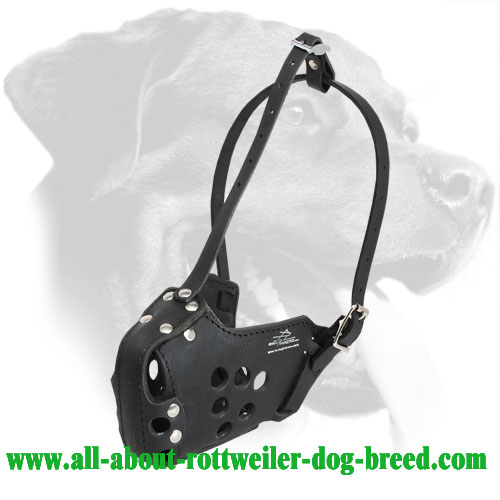 Leather Rottweiler Muzzle for Military, Police, Training, Agitation