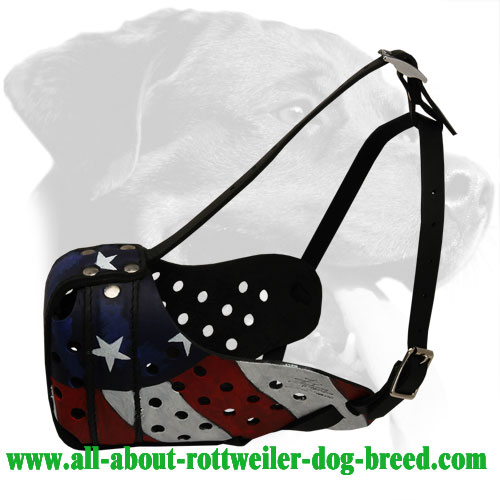 Handpainted Leather Rottweiler Muzzle for Attack Training and Everyday Walks