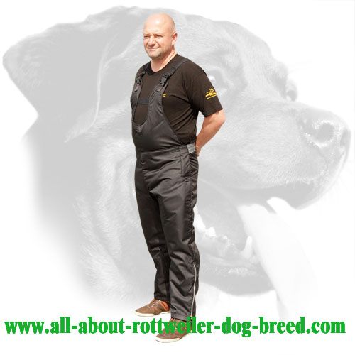 Nylon Scratch Protection Pants for Rottweiler Field Training Sessions