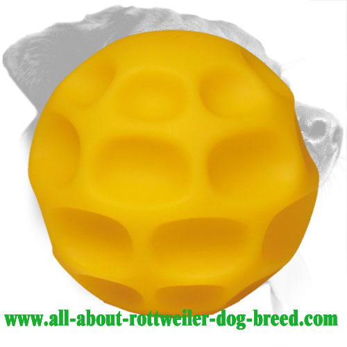 Rottweiler Food Dispenser Made of Durable Tetraflex (Medium)