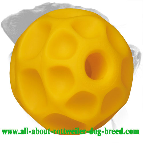Challenging Tetraflex Rottweiler Treat Dispensing Ball (Large)