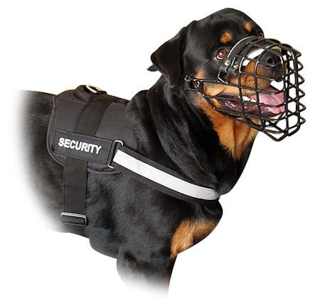 Nylon Harness with reflective strap for Rottweiler