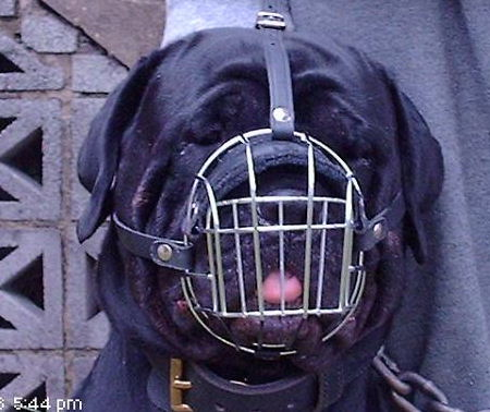 Rottweiler Wire Basket dog muzzle - big muzzle for Rotty