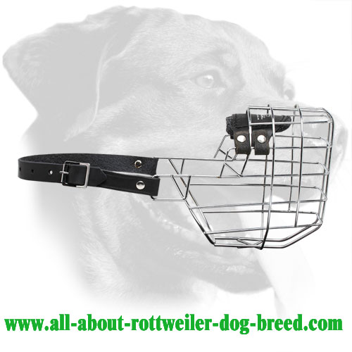 'The Silencer' Large Wire Muzzle for Rottweiler