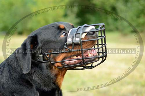 Adjustable Large Metal Cage Dog Muzzle
