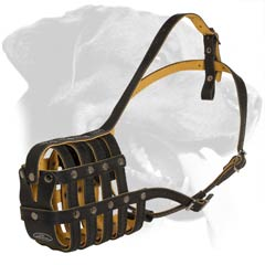 Incredibly Comfortable Leather Dog Muzzle