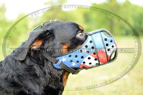 American Flag Hand Painted Leather Dog Muzzle for Rottweiler