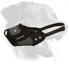 Nylon and Leather Muzzle for Rottweiler with Tear Proof Adjustable Strap