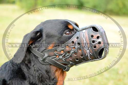 Rottweiler Exclusive Leather Muzzle for Attack Training