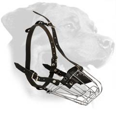 Stylish Muzzle for Rottweiler