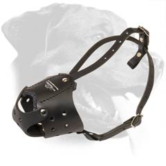 Everyday soft leather muzzle