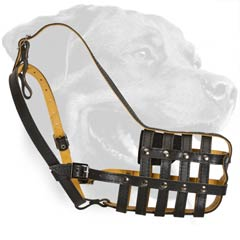 Multipurpose Leather Canine Muzzle