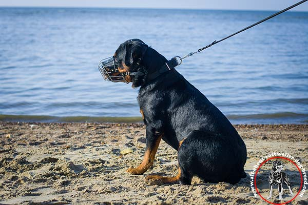 Multifunctional wire dog muzzle for Rottweiler