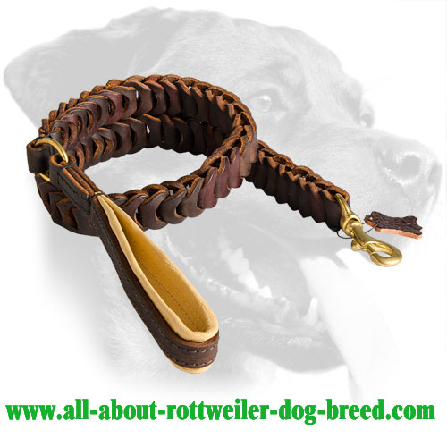Rottweiler Leather Leash with stitched handle