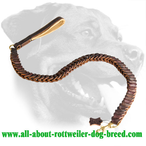 Perfect Leather Leash for Rottweiler
