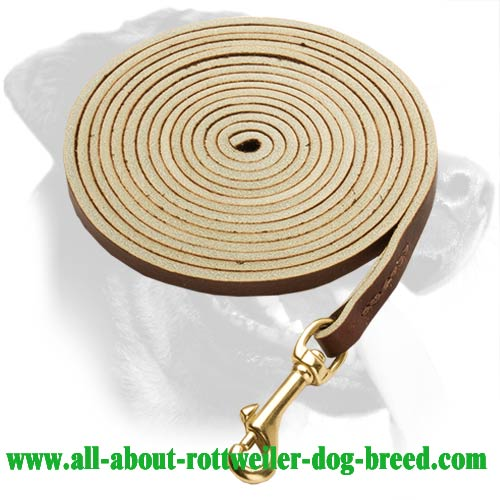 Topnotch Rottweiler Leather Leash
