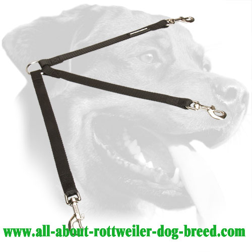 Nylon Rottweiler Coupler Equipped with Nickel Snap Hooks