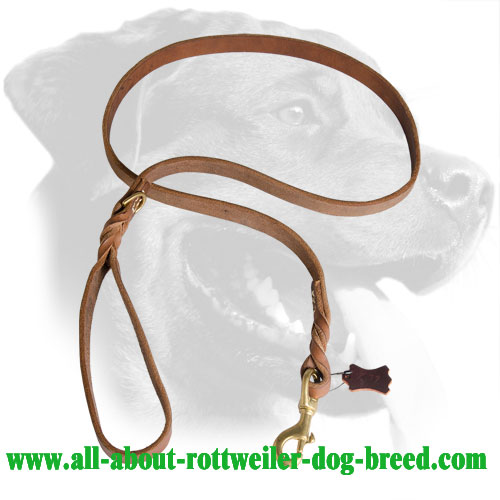 Leather Rottweiler Leash Decorated with Braids