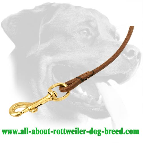 Leather Rottweiler Leash Equipped with Brass Hardware