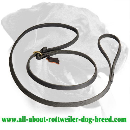 Leather Rottweiler Leash Equipped with Brass O-Ring