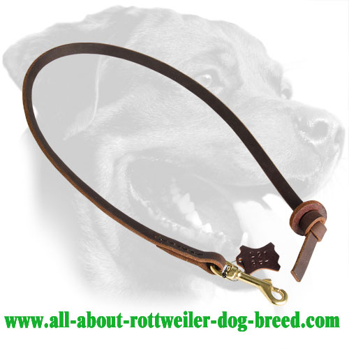 Rottweiler Leash Made of Leather with Brass Snap Hook