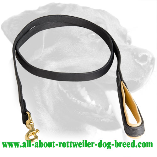 Leather Rottweiler Leash with Soft Nappa Handle
