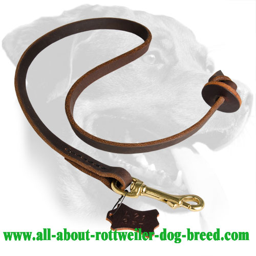 Short Leather Leash for Training Rottweilers