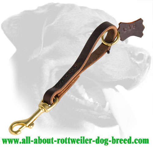 Strong Short Leather Rottweiler Leash for Close Control