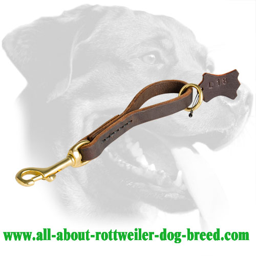 Neat Short Leather Rottweiler Leash for Walking and Training