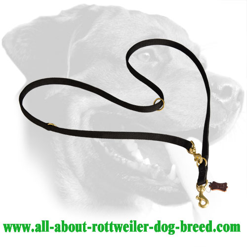 Rottweiler Leash Made of Nylon with Brass Hardware