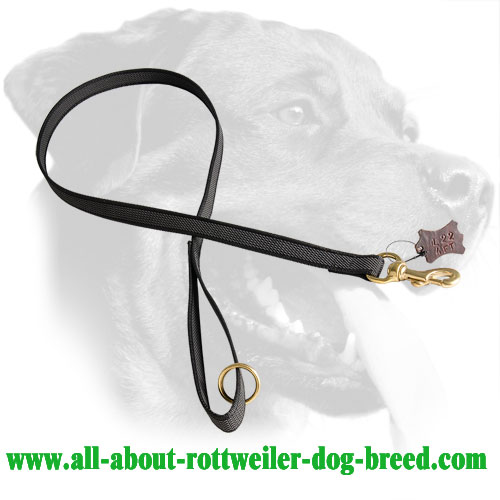 Nylon Rottweiler Leash Equipped with Comfort Grip Handle