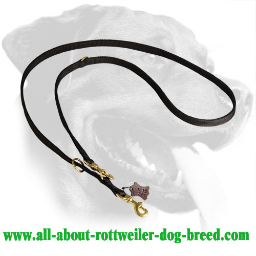 Multifunctional Rottweiler Leash Made of Nylon